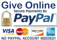 Give Online Credit Cards